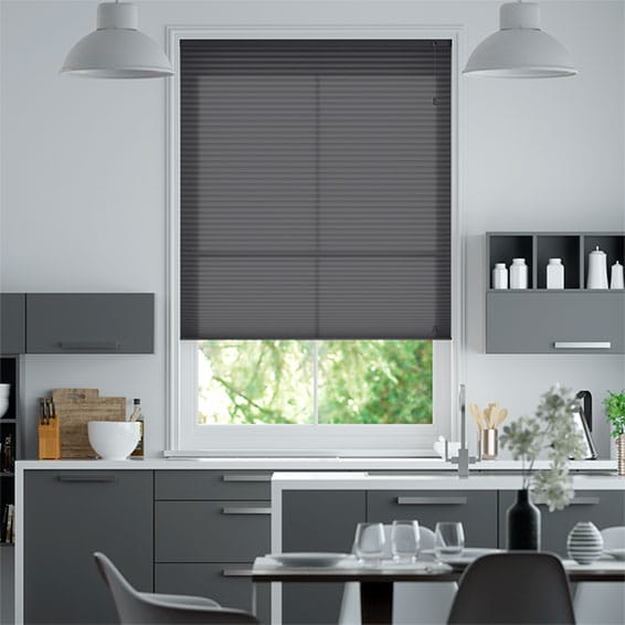 DuoLight Anthracite  Pleated Blind