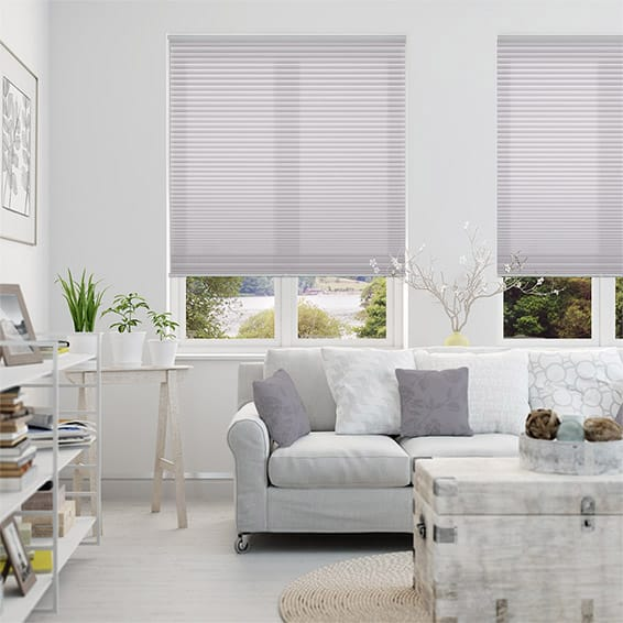 Duolight Cordless Wisteria Pleated Blind