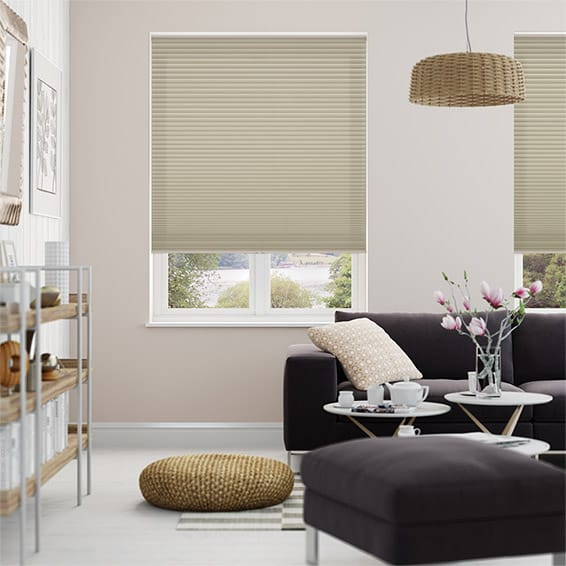 DuoShade Cordless Fallow Pleated Blind