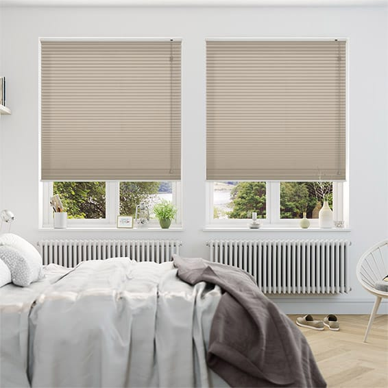 DuoShade Pebble Pleated Blind