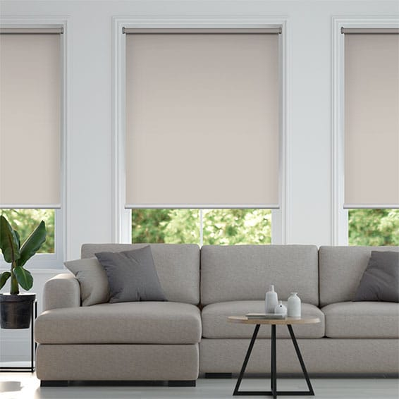 Electric Titan Canvas Roller Blind